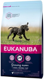Eukanuba Puppy Large Breed With Chicken 15kg