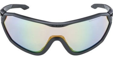 Alpina Sports S-Way L VLM+ Black/Grey