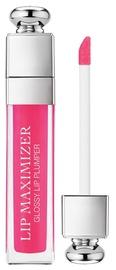 Christian Dior Addict Lip Maximizer Plumping Gloss 6ml 07
