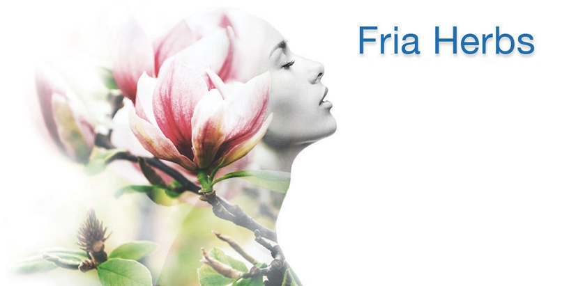 Fria Bio Herbs Intimate Wipes 12pcs Protection