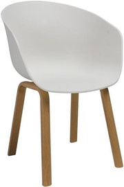 Söögitoa tool Signal Meble Ego Oak/White, 1 tk