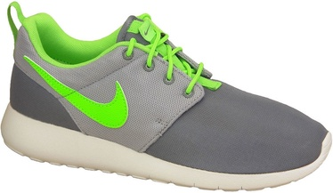 Nike Running Shoes Roshe One Gs 599728-025 Gray 39