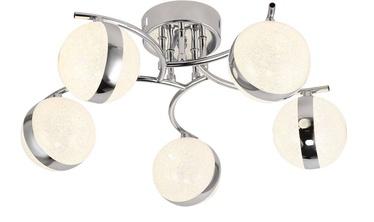 Domoletti Arctica 19010-5 15W Ceiling Lamp