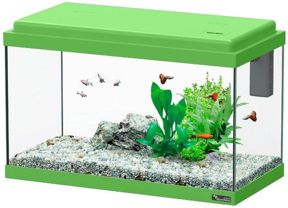 Aquatlantis Funny Fish 50 Green