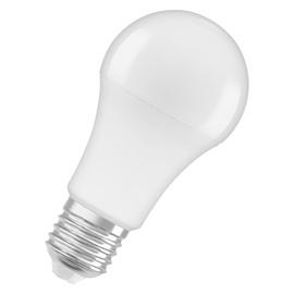 LAMP LED A60 13W E27 2700K 1521LM PL/MAT