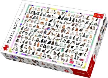 Trefl Puzzle 208 Cats 1000pcs 10498T