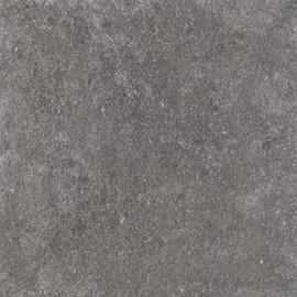 PLAAT SPECTRE GREY RECT 60X60 (1.8)