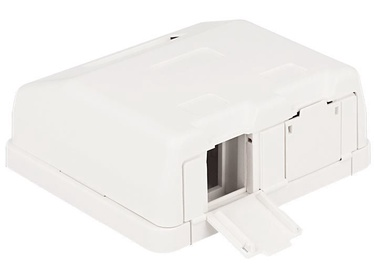 Delock Keystone Surface Mounted Box 2-Port with Dust Cover