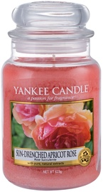 Yankee Candle Classic Large Jar Sun Drenched Apricot Rose 623g