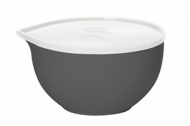 Plast Team Bowl With Lid D21cm 2l Grey