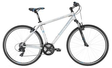 """Jalgratas Kellys Cliff 30 21"""" 28"""" Silver 16"""