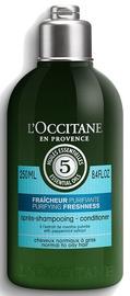 Juuksepalsam L´Occitane Aromachologie Purifying Freshness Conditioner, 250 ml
