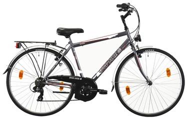 "Jalgratas Bottari Good Bike Oxford 50cm 28"" Grey"