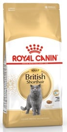Kassitoit Royal Canin British Shorthair, 2 kg