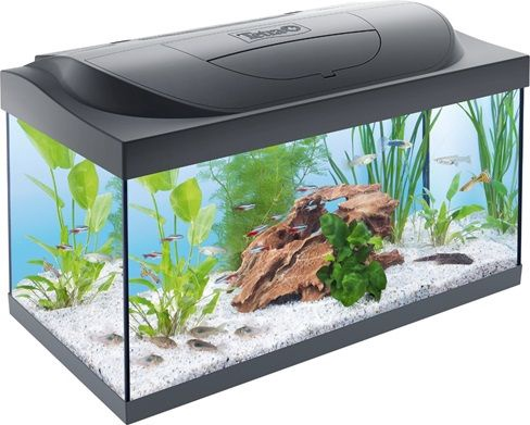 Tetra Starter Line LED 54l Aquarium