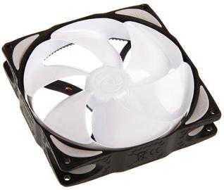Noiseblocker Fan NB-eLoop Series 120mm B12-4