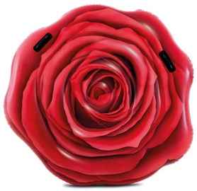 Intex Red Rose