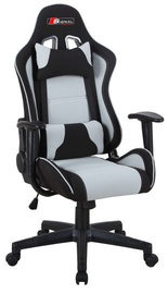 Signal Meble Office Chair Zanda Black/Grey