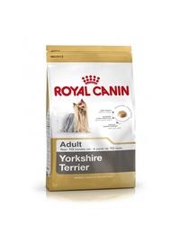 KOERATOIT ROYAL CANIN TERJER 7,5KG