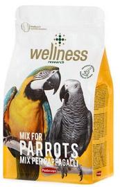 Padovan Wellness Parrots 750g