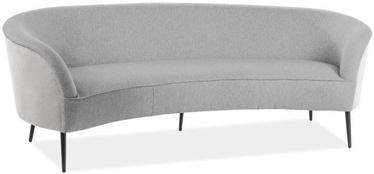 Диван Signal Meble Elvis Grey, 54 x 220 x 77 см