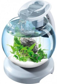 Tetra Duo Wafer Globe LED White 6.8L