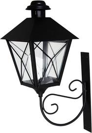 Polar Lanterns Paula Black 008862