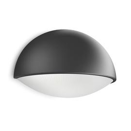 Kinnitatav valgusti Philips 164079316 Dust 1X4W LED