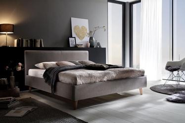 Voodi Meise Möbel, hall, 200x160 cm