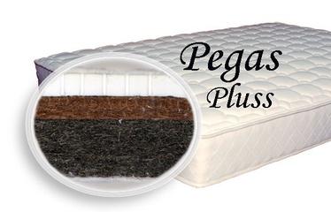 Madrats SPS+ Pegas Pluss, 90x200x10 cm