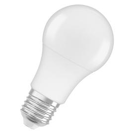 LAMP LED A60 8.5W E27 2700K 806LM PL/MAT