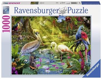 Ravensburger Bird Paradise Puzzle 1000pcs 196739