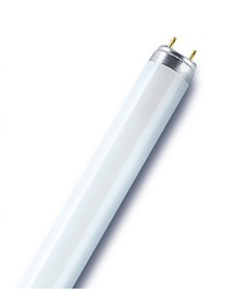 Radium Lumin Fluorescent Lamp T8 G13 865 36W