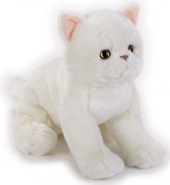 Dante National Geographics Exotic Cat 25cm