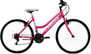 "Jalgratas Frejus Donna MTB Pink, 24"""