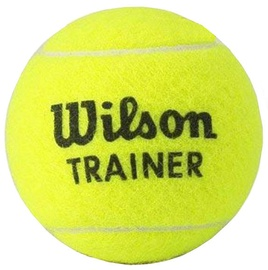 Wilson Trainer Ball WRT131200