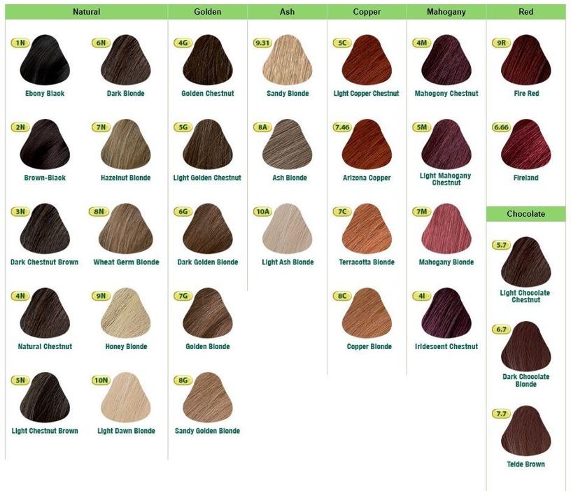 Naturtint Permanent Hair Color 165ml 10N