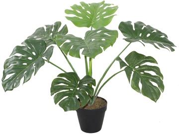 Home4you Artificial Green Plant Monstera H60cm