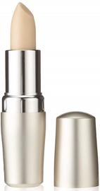 Huulepalsam Shiseido Protective Lip Conditioner SPF12, 4 g