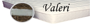 Madrats SPS+ Valeri, 100x200x7 cm