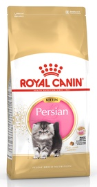 Royal Canin FBN Kitten Persian 2kg