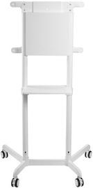 NewStar NS-M1250WHITE Flat Screen Floor Stand 37-70'' White
