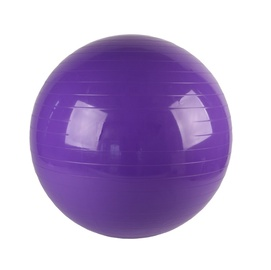 VirosPro Sports Fitness Ball 75cm Purple