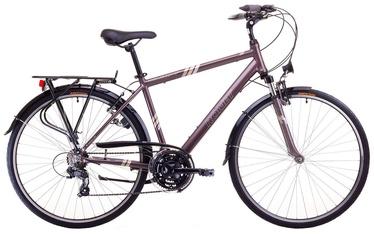 "Jalgratas Romet Wagant 23"" 28"" Brown 17"