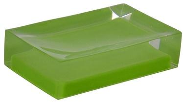Ridder Colours 22280305 Green