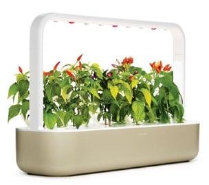 Nutiaed Click & Grow Smart Home Garden 9, liivakarva pruun