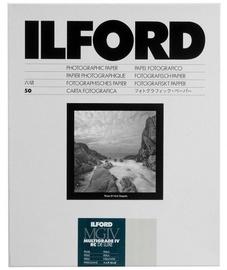 Ilford MG IV 44M Pearl 305 x 406 50