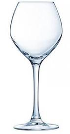 Arcoroc Magnifique Wine Glass 250ml