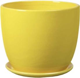 Polnix Amsterdam 20 x 18cm Yellow