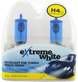 Bosma H4 12V 55W Extreme White Light Bulb 2pcs